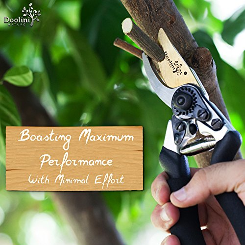 Doolini Nature Professional Pruning Shears - Bypass Garden shears,Drop Forged Hand Pruners Ergonomic Comfort Grip & Safety Lock by Doolini Nature (Image #4)