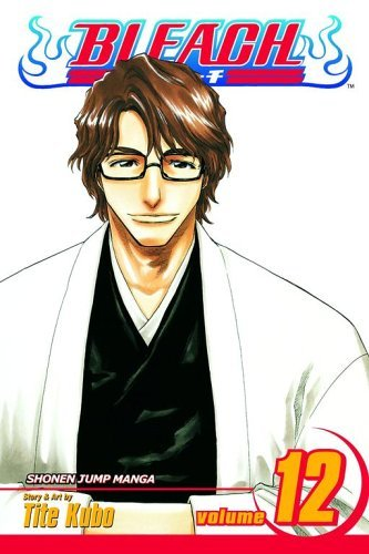 Bleach, Vol. 12: Flower on the Precipice