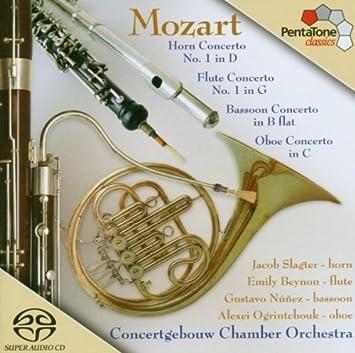 Mozart Concerto Bb K191 1st Movt Allegro Bassoon Choice Materials Wind & Woodwinds
