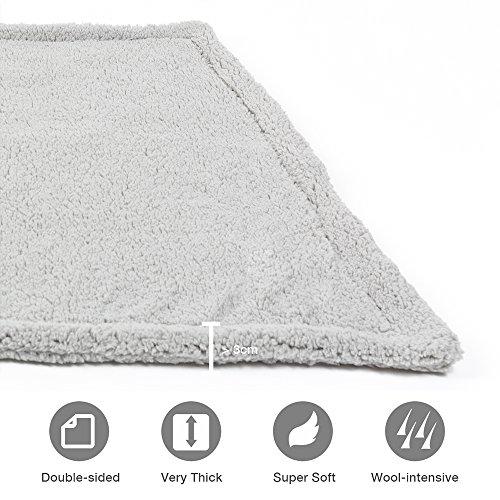 Allisandro [Upgrade Double Layer] Pet Premium Throw Blanket for Dog Cat Puppy Kitten Super Soft Fleece Velvet Four Color Three Size 39'' X 31'' Light Grey by Allisandro (Image #4)