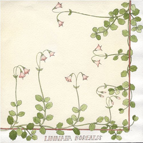linnea-borealis-flower-luncheon-napkin-cream