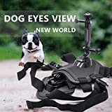 Pets Dog Harness Mount Adjustable Chest Strap Shoot Picture and Video for Insta360 ONE X/EVO Action Camera
