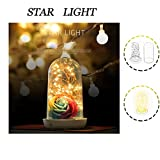ThreeCat LED Lamp Creative Bedside Table Lamps Fairy Micro Starry String Lights Rechargeable Lamp Streamer Effects Optical Illusion with USB Charge (Storage battery)