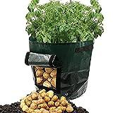 iloits Taro Potato Planter Bag Plant Flower Grass Grow Pot Home Garden Growing Light Bulbs