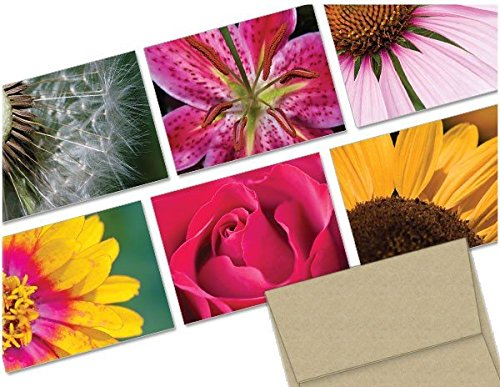 Flowers- 36 Note Cards - 6 Designs - Blank Cards - Kraft Envelopes Included
