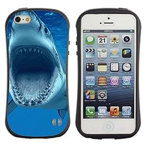 Paccase / Suave TPU GEL Caso Carcasa de Protección Funda para - Shark Jaws Teeth Vicious Blue Underwater - Apple Iphone 5 / 5S