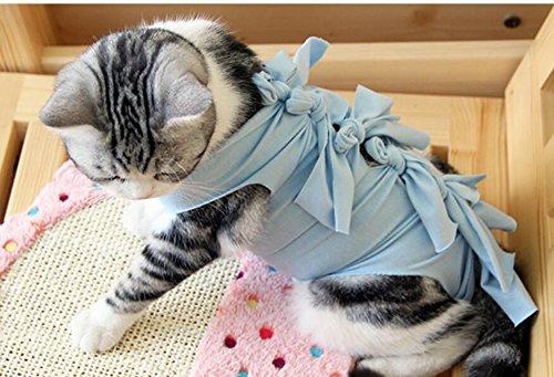 DDOQ Vestiti estivi cane gatto Sterilizzazione Svezzamento Ventilazione fisiologica Abbigliamento per animali domestici Blu M