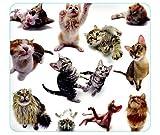 Allsop Cat Group Mouse Pad