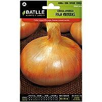 Semillas Hortícolas - Cebolla amarilla paja Virtudes - Batlle