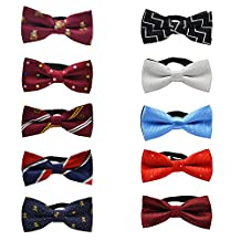 TopTie Dog Cat Pet Bow Tie Flowers Dots Bowtie Collar Accessory Assorted Pack of 10-set B