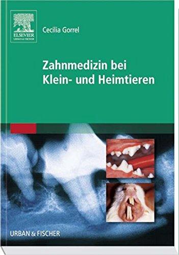 Zahnmedizin Bei Klein  Und Heimtieren