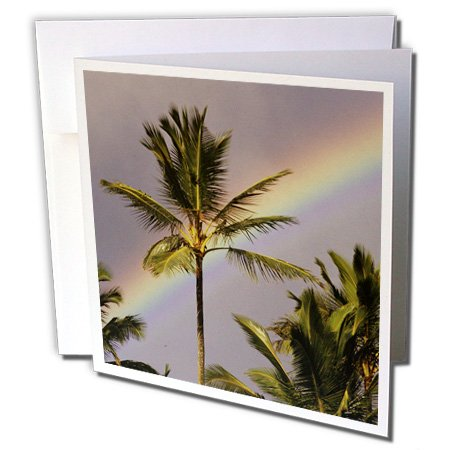 3dRose Greeting Cards, Hawaii, 6 x 6 Inches, Rainbow Behind Coconut Palm Tree (gc_89793_2)