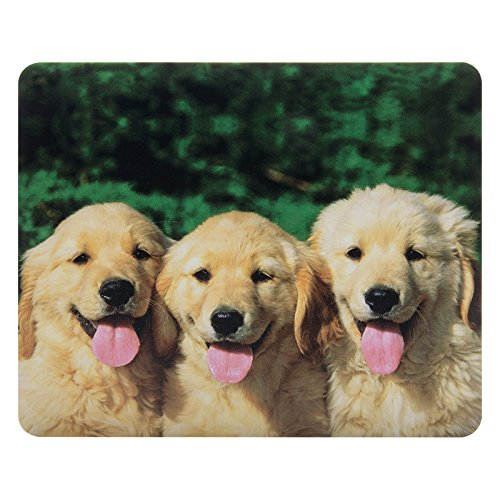 CIAOYE Mouse Pad Synthetic Leather RectangleSlim Gaming Mouse Pad Anti Slip High Pixel Mousepad,Golden Retriever