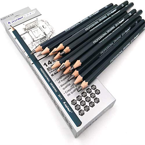 Sketching Pencil Set, DDream 14 Pcs Drawing Pencil Sketch Pencils Set for Artists Adults Children Include 12B 10B 8B 7B 6B 5B 4B 3B 2B B HB 2H 4H 6H Graphite Professional Sketch Pencils Set