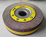 Premium FLAP WHEEL 8'' x 1'' with 1'' bore Unmounted 40 grit