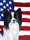 Caroline's Treasures SS4032CHF USA American Flag with Papillon Flag Canvas, Large, Multicolor Review