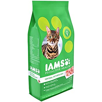Iams Oral Care Dry Cat Food