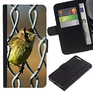 KingStore / Leather Etui en cuir / Apple Iphone 6 PLUS 5.5 / Pájaro lindo del bebé del resorte Naturaleza Sol