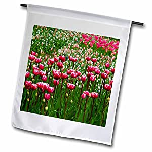PS Flowers - Pink Tulips in a Field - Flowers - Photography - 18 x 27 inch Garden Flag (fl_51357_2)