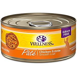 Wellness Natural Grain Free Wet Canned Cat Food, Chicken Pate, 5.5-Ounce Can (Pack Of 24) 95