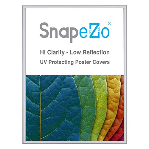 Picture Frame Glass Prices - SnapeZo Picture Frame 18x24, Silver Super-Slim Series 0.6 Inch Aluminum Profile, Front-Loading Snap Frame, Wall Mounting