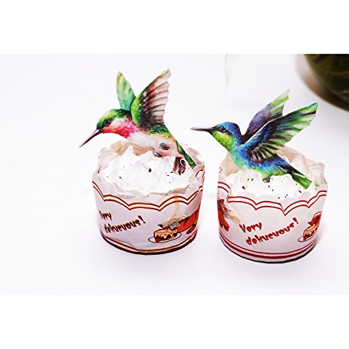 GEORLD Edible Hummingbird Cupcake Topper Cake Bird Decoration by Wafer Paper,12 Counts by GEORLD