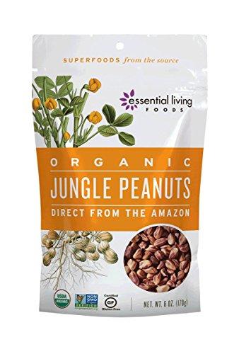 Jungle Food - 3