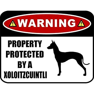 PCSCP Warning Property Protected by a Xoloitzcuintli (SILHOUETTE) 11.5 inch x 9 inch Laminated Dog Sign 1