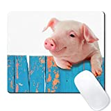 Galdas Gaming Mouse Pad Cute Funny Pig Mousepad Non Slip Rubber Mouse MatMouse Pads for Computers Laptop