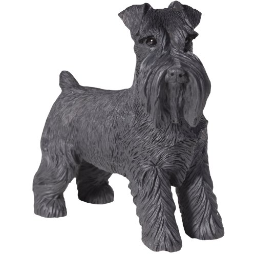 - Sandicast Black Schnauzer with Uncropped Ears Sculpture, Standing, Small Size