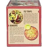 Unique Gardener Grow Your Own Venus Fly Trap