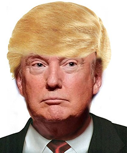 Donald Trump Billionaire Wig Adult Halloween Accessory
