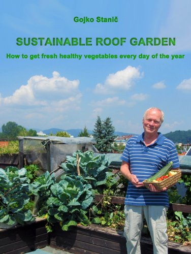 Sustainable Roof Garden How To Get Fresh Healthy Vegetables Every