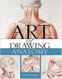 Art of Drawing Anatomy: David Sanmiguel: 9781402755170