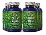 Blue green algae pills - BLUE GREEN ALGAE - immune system stimulation (6 bottles)