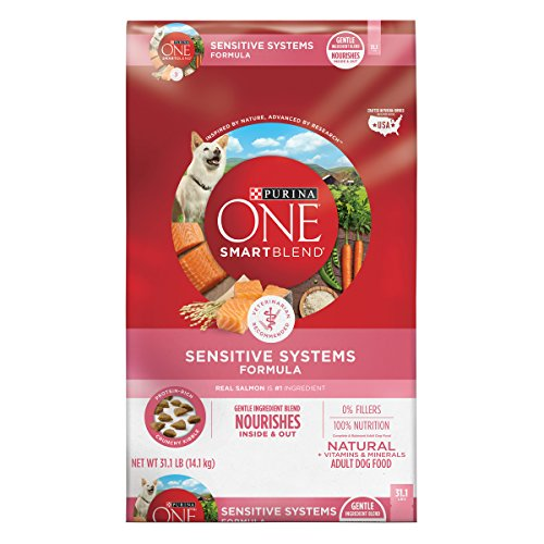 Purina ONE Natural Sensitive Stomach Dry Dog Food, SmartBlend Sensitive Systems Formula - 31.1 lb. Bag (Puppy Food For Sensitive Stomachs Large Breed)