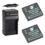 Best Battery Charger For Panasonic SDRs - DSTE 2x CGA-S008 CGA-S008E Battery + DC68 Travel Review