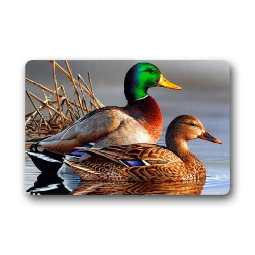 Top Fabric & Non-Slip Rubber Indoor/Outdoor Doormat Door Mats - Oil Painting Mandarin Duck Art Bird Floor Mat Rug for Home/Office/Bedroom