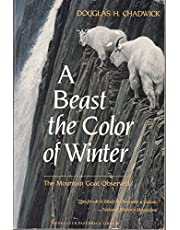 A Beast the Color of Winter
