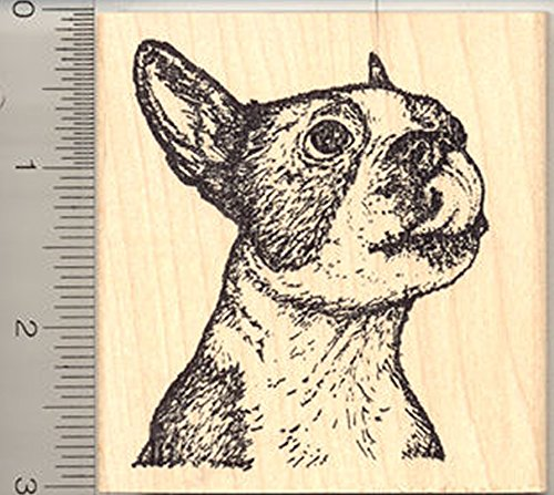 Boston Terrier Rubber Stamp, Dog Licking Lips