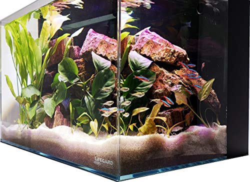 (Lifegard Aquatics Ultra Low Iron Crystal Aquarium with Back Filter 45° Beveled Edge Rimless 9.98 Gallons, Clear)