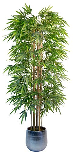 Maia Shop Bambu Canas Naturales, Ideal para Decoracion de Hogar, Arbol, Planta Artificial (180 cm), Materiales Mixtos
