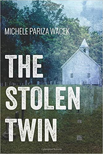 Book The Stolen Twin