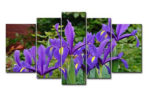 So Crazy Art - Canvas Print Wall Art Painting For Home Decor,Deep Purple Iris 5 Pieces Panel Paintings Modern Giclee Stretched And Framed Artwork Oil The Picture For Living Room Decoration,Flower Pictures Photo Prints On Canvas (Framed Iris Purple)