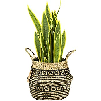 850cadf8d5b LEEPES Large Natural Woven Seagrass Tote Belly Basket for Storage,Laundry,  Picnic,Plant Pot Cover,and Beach Bag(10.5