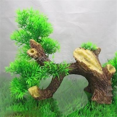 Wood Bonsai - 8