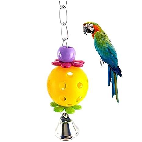 Namgiy Jaula para loro, juguetes para pájaros, juguetes, bola para ...