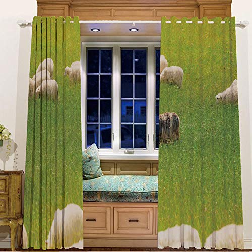 (iPrint Rings top Window Panels Blackout Curtains for Kids Room 2 Curtain Panels,58