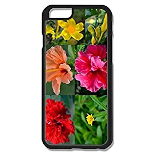 Amys PerSempre Favorable Plastic Case For IPhone 6 case iphone iphone