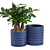 """KYY Ceramic Planters Garden Flower Pots 6.5"""" and"""
